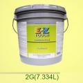 Краска E-Z Touch упаковка 2G